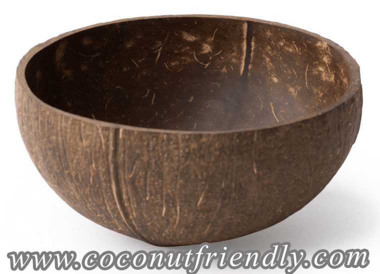 NATURAL COCONUT BOWLS FOR WHOLESALE