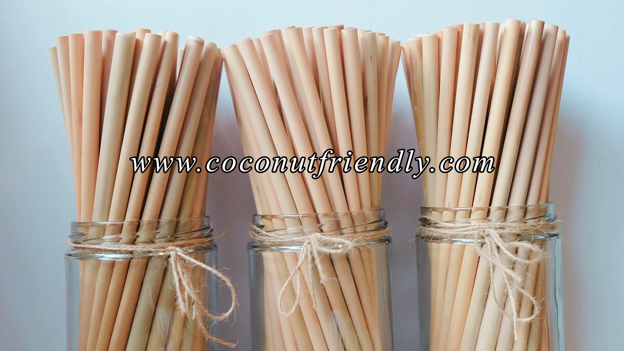 CFS 805 – Wholesale Bamboo Straws , Vietnam Natural Bamboo straws for wholesale