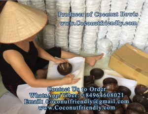 Vietnam Coconut bowls wholesale - coconutfriendly.com