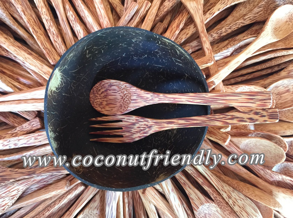 Wholesale Natural coconut bowls and wooden spoons, Vietnam Coconut Bowls for Wholesale