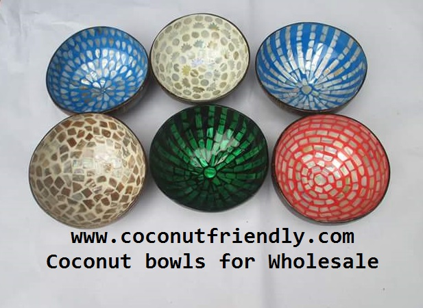 Wholesale lacquer coconut bowls, Natural coconut bowls and spoons wholesale