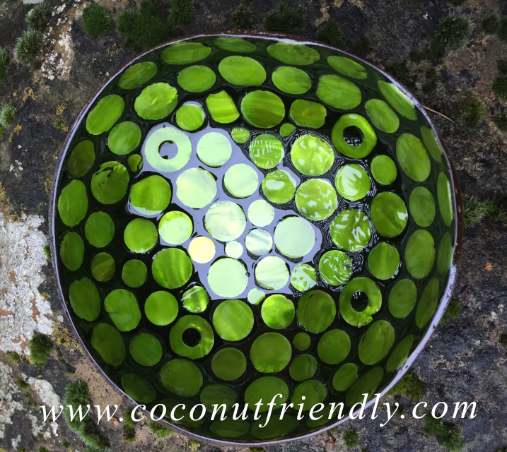 Lacquered Green Seashell Coconut Bowls for Wholesale Handmade vietnam