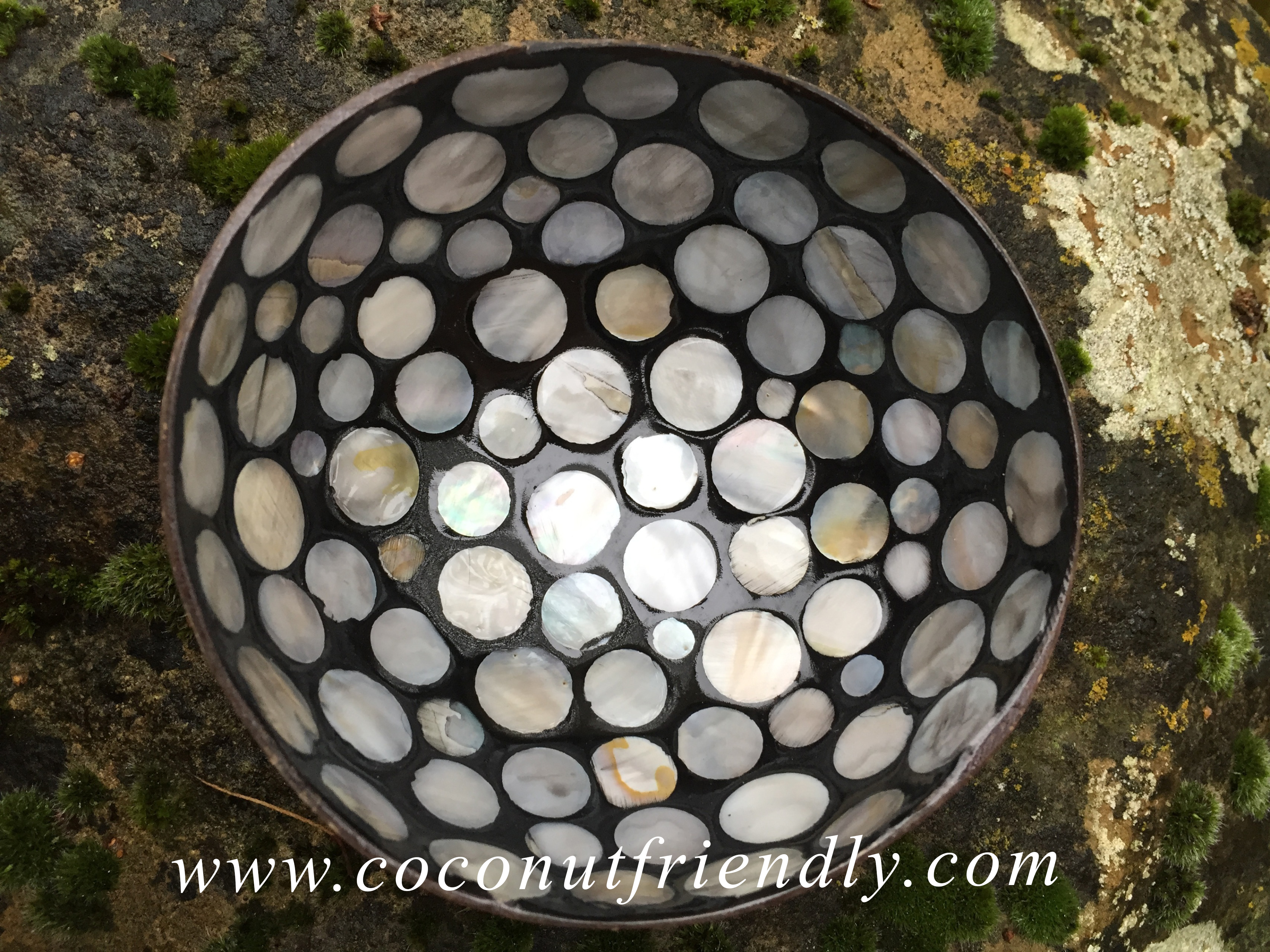 Vietnam Coconut Bowls with Mother of pearls Wholesale
