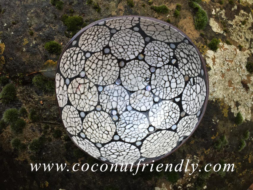 Vietnam Coconut Bowls with Eggshells inlay Wholesale