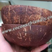 Coconutfriendly,com - Vietnam Engraved Coconut Shell Bowls for Wholesale