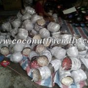 VIETNAM LACQUERED COCONUT BOWLS FOR WHOLESALE