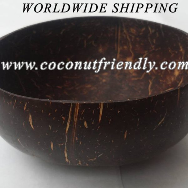 Coconutfrienldy.com - wholesale coconut shell bowl