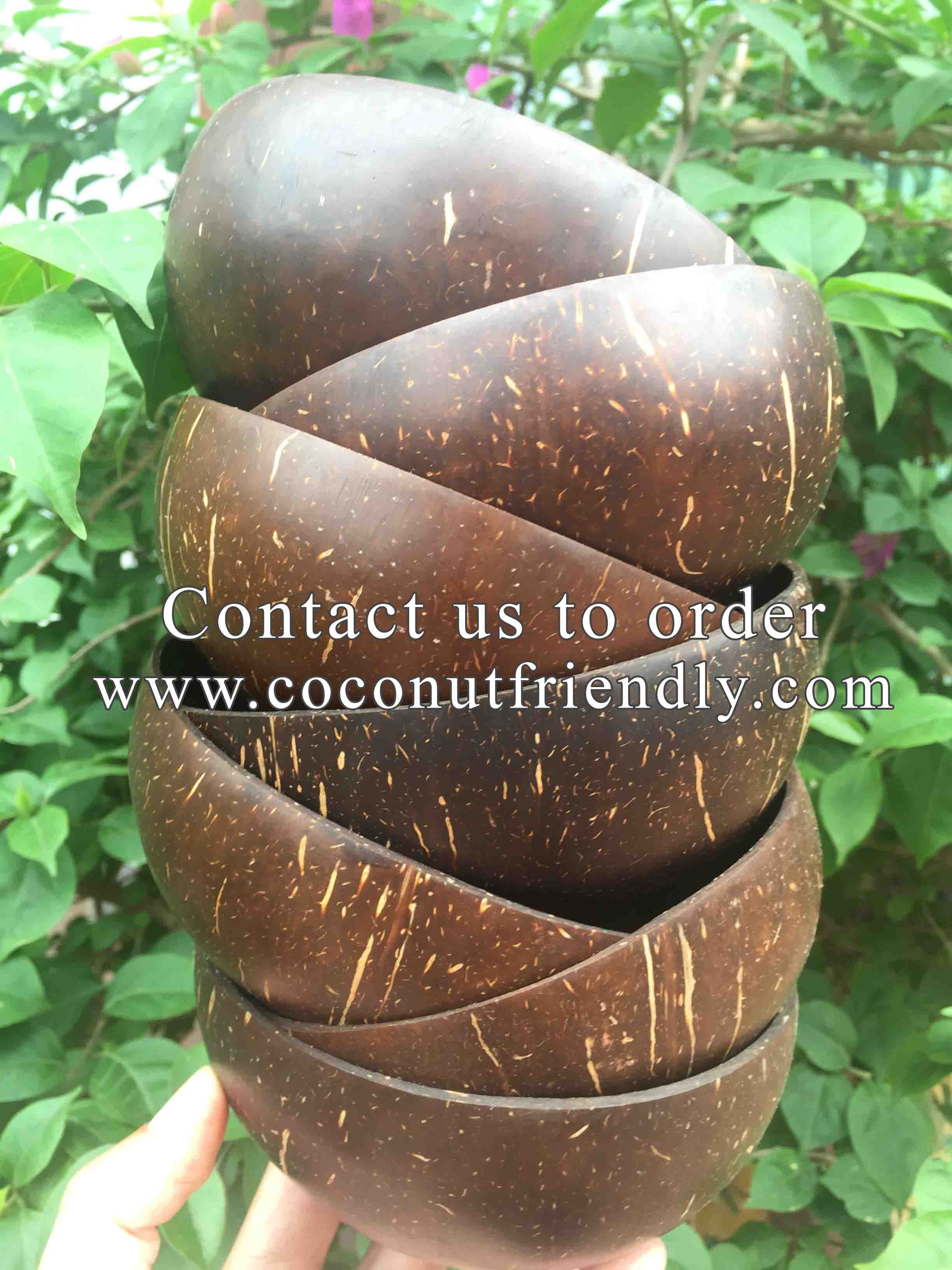 Original Coconut Shell Bowls Wholesale