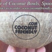CFCB 01 Vietnam coconut shell bowl supplier , Wholesale cheapest coconut bowls in Vietnam