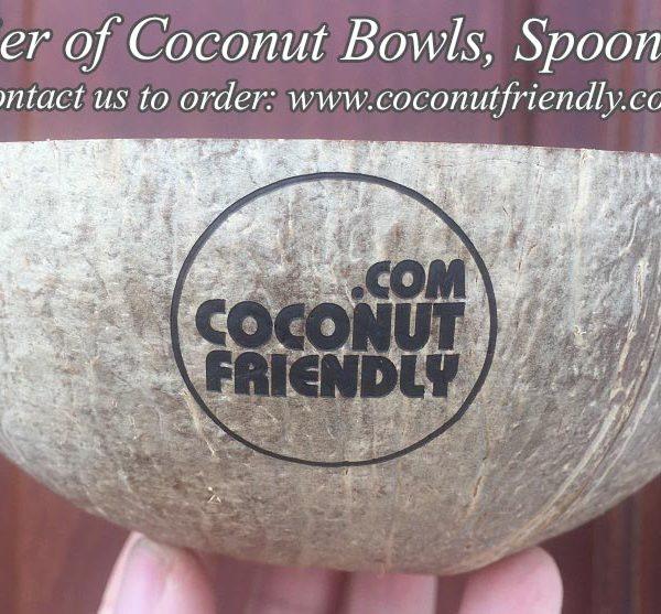 CFCB 01 Vietnam coconut shell bowl supplier , Wholesale cheapest coconut bowls in Vietnam