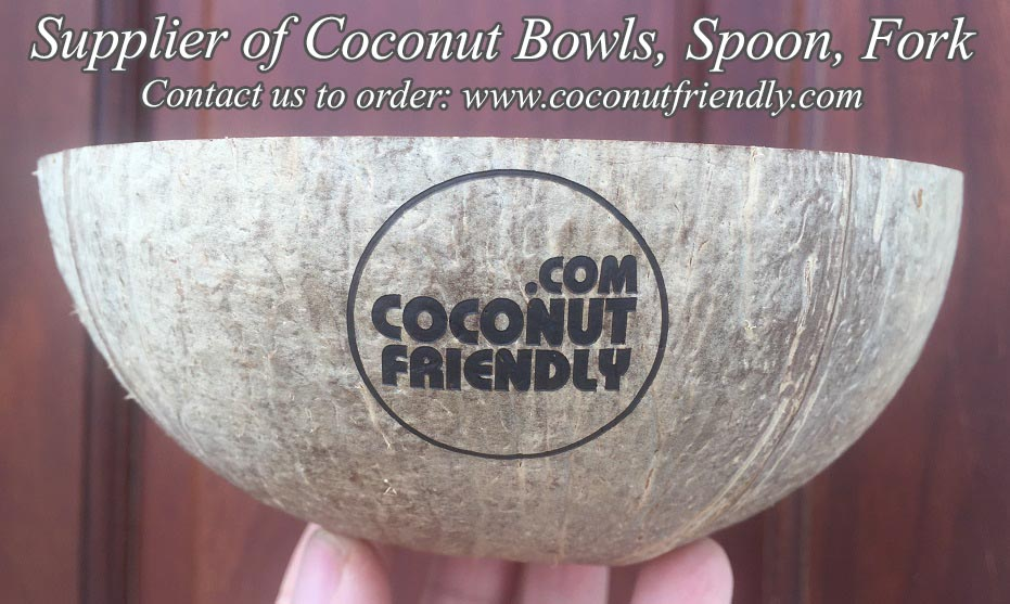 CFCB 1801 Vietnam coconut shell bowl supplier , Wholesale cheapest coconut bowls in Vietnam