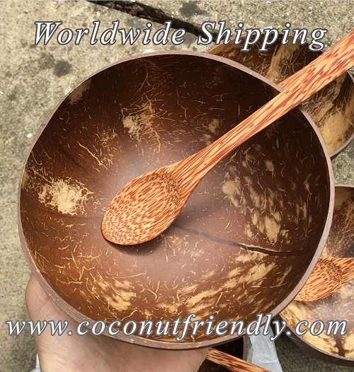 Vietnam coconut shell bowl supplier , Coconut bowls in vietnam