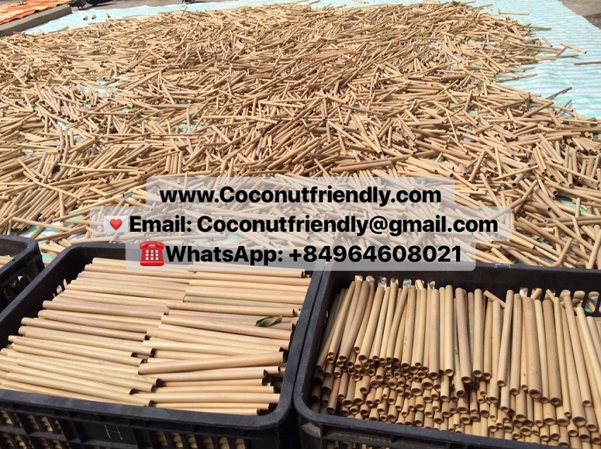Wholesale High quality hot selling natural bamboo straw from Vietnam