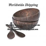 Wholesale Coconut Bowls and Wooden Spoons Set , Wholesale coconut bowls , Wholesale coconut bowls cheap price - Coconutfriendly.com