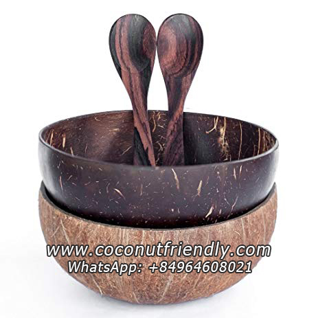 Wholesale High-Quality Cheap Price Vietnam Natural Reusable Coconut Shell Bowl and Spoon