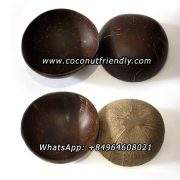 Vietnam Natural coconut shell bowl wholesale