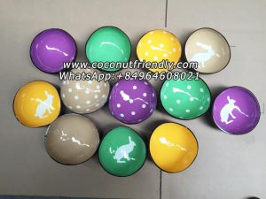 High quality eco-friendly handmade Vietnam natural coconut shell bowl