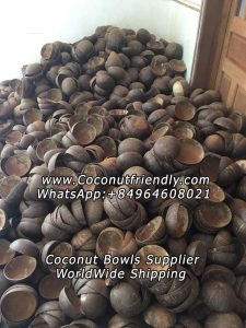 wholesale Lacquer coconut shell bowl in vietnam