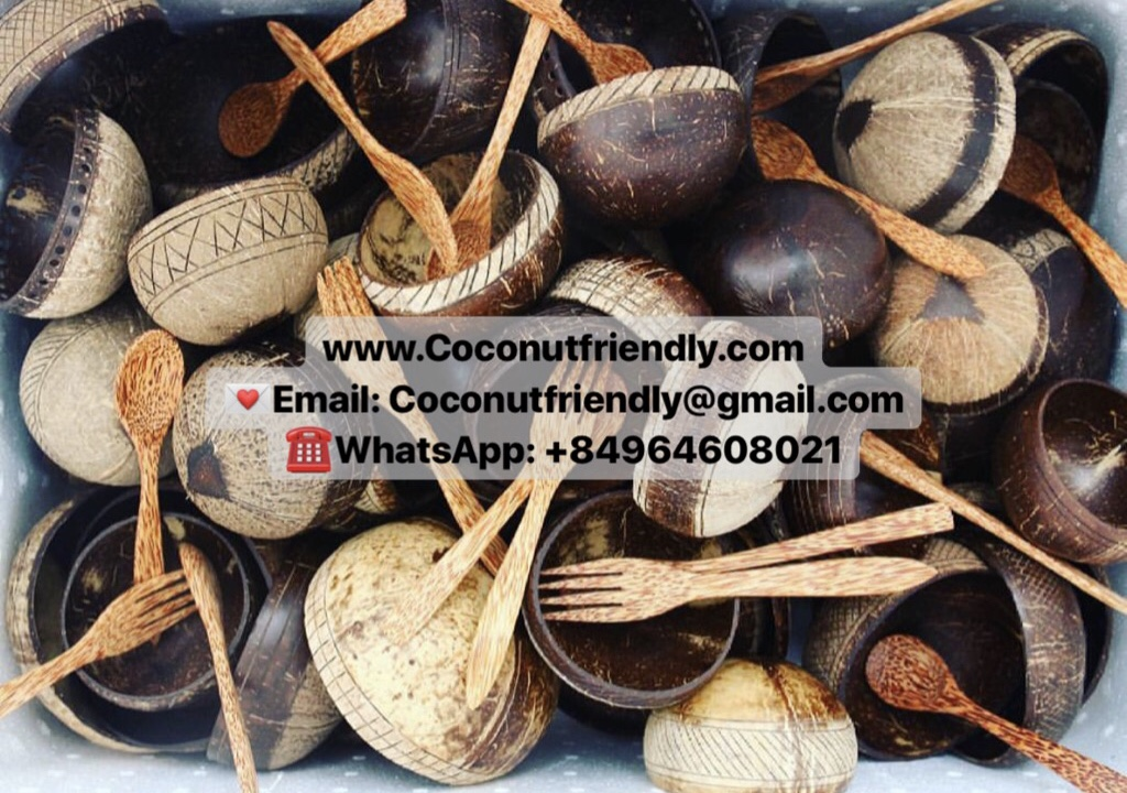 Natural original coconut bowls, organic coconut bowl set