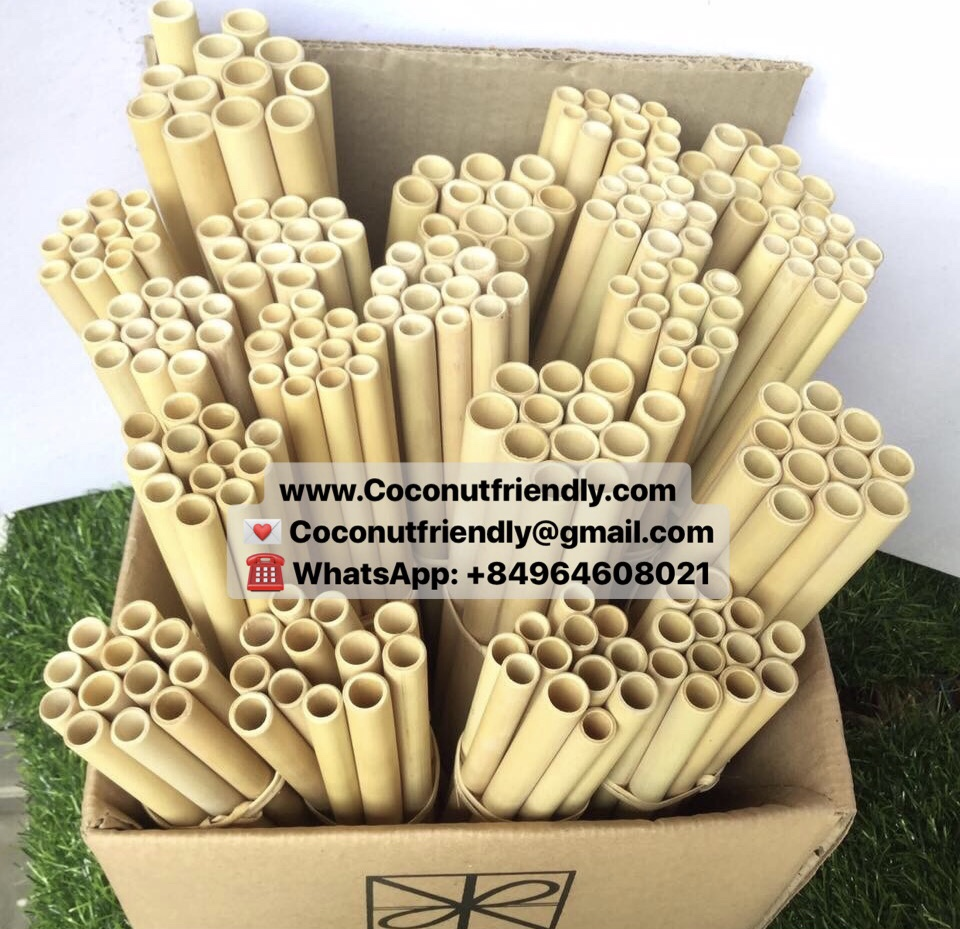 20 cm Hot Trend Futurer Organic Natural Bamboo Straw Drinking Made in Viet Nam