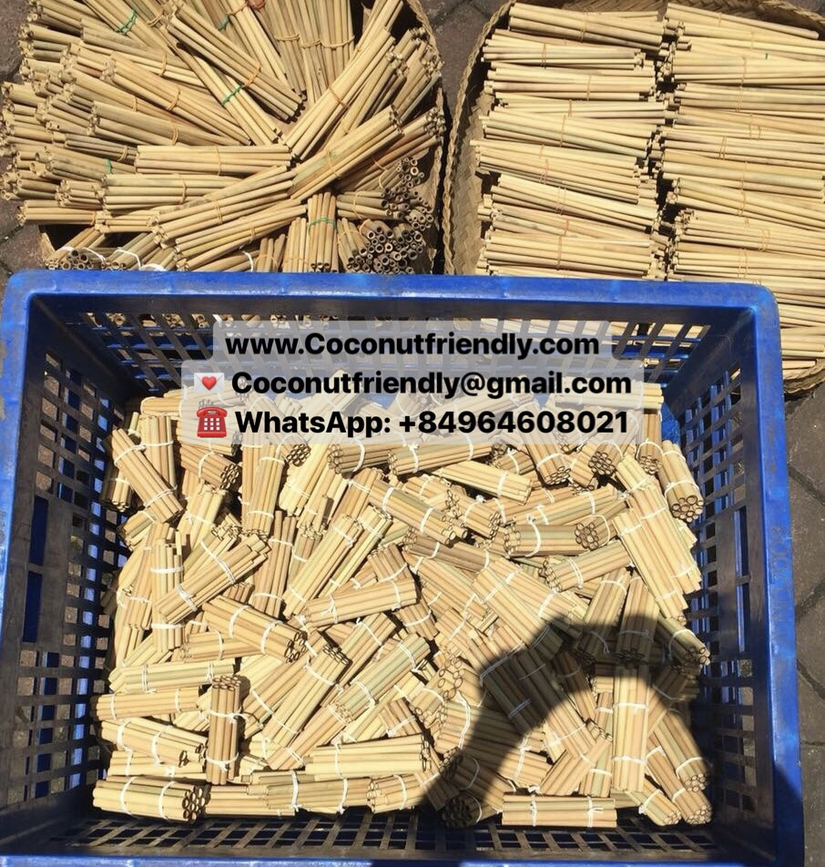 CF 806 Viet Nam High Quality Organic Cheap Bamboo Straw Drinking wholesale