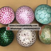 Wholesale lacquered coconut shell bowl in vietnam