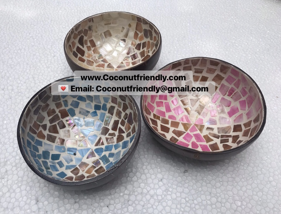 Ecofriendly Vietnam lacquer coconut shell bowl supplier, seashell coconut bowl