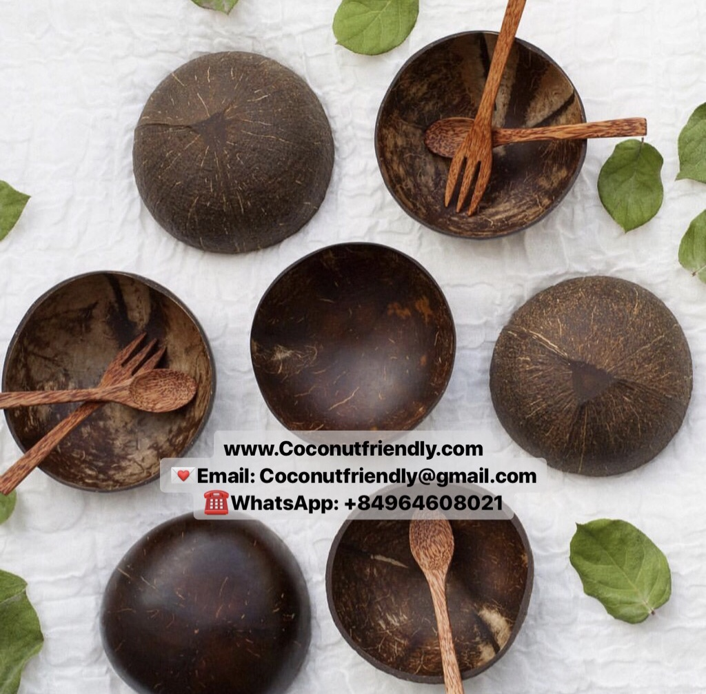 Wholesale natural coconut shell bowl and spoon from Vietnam