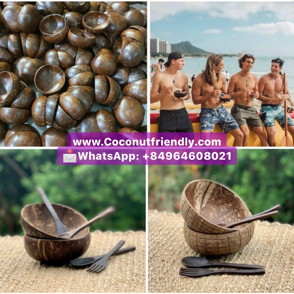 WHOLESALE VIETNAM COCONUT BOWLS POLISH AND SPOONS FOR SMOOTHIE AÇAI