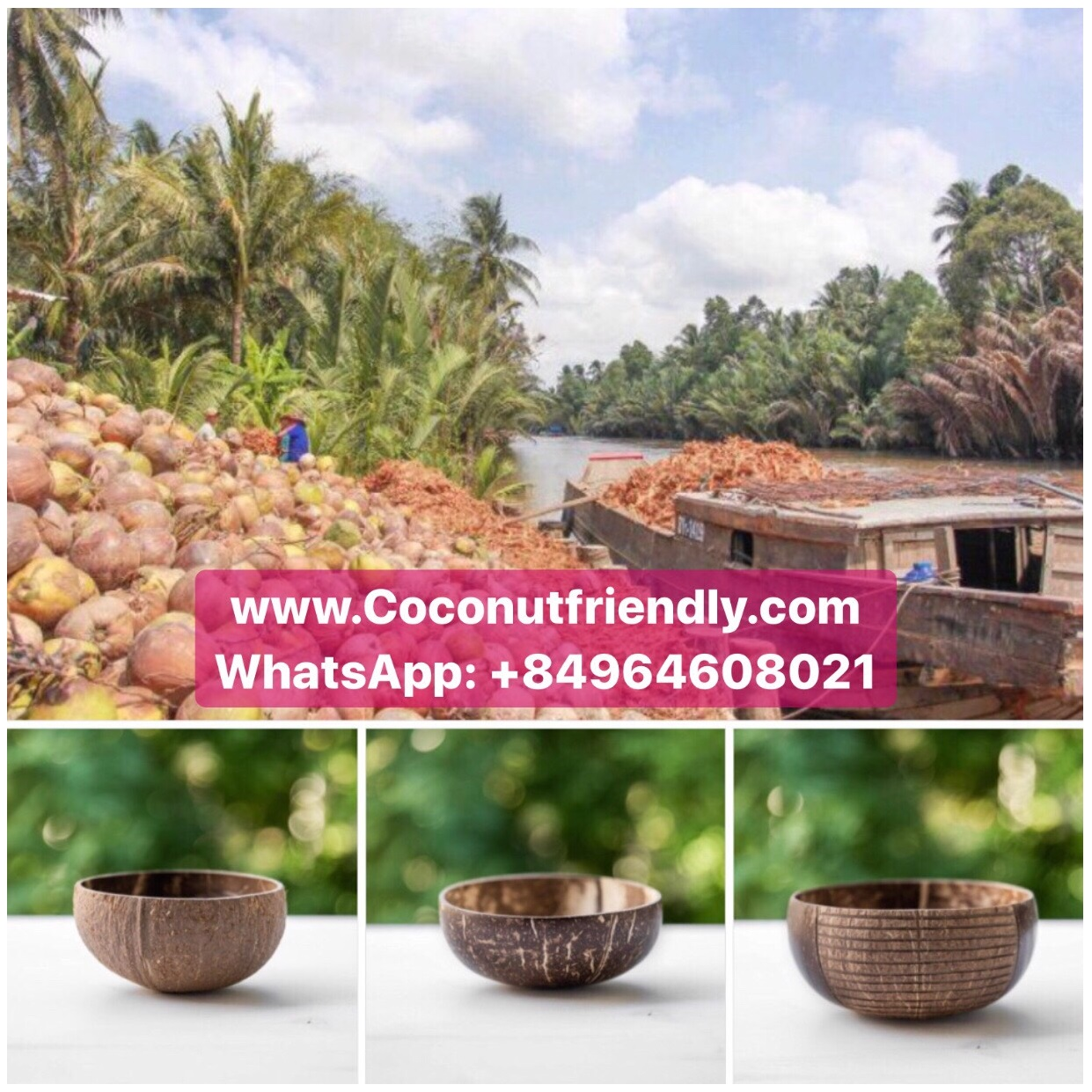 CE EU Certification and Bowls Dinnerware Type Customized Logo Polished Technic Coconut Shell Bowl